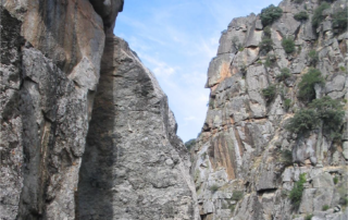Beneficios de las áreas protegidas españolas.